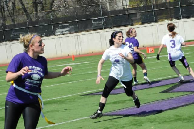New Rochelle blondes and brunettes will face off to raise money for Alzheimer's research.